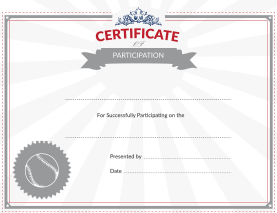 Baseball Certificate of Participation Award